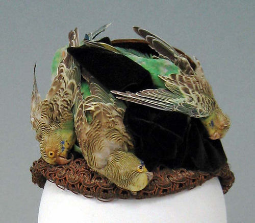 Bonnet of silk birds, Metropolitan Museum of Art