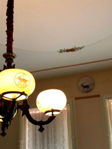Eastern Elk motifs in a bedroom of the Armour Stiner Octagon House